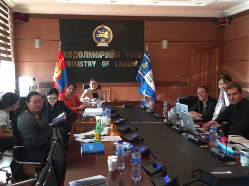 Labour Law Reform Working Group (Mongolia)